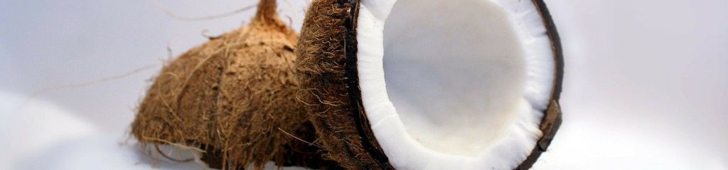 kokosnuss offen fleisch