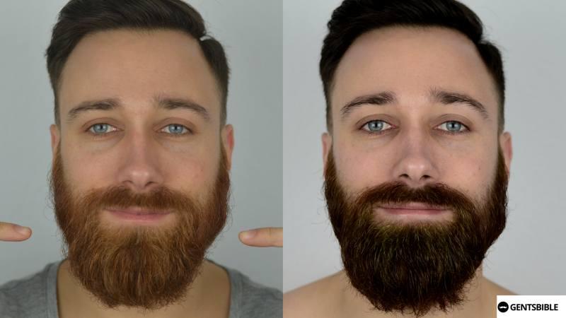 Bart färben grau